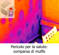 muffa roma